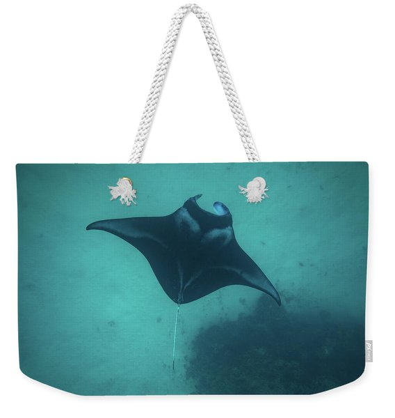 Manta Ray Swimming In The Pacific Weekender Tote Bag