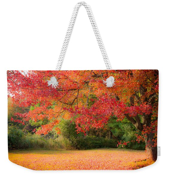 Weekender Tote Bag featuring the photograph Maple In Red And Orange by Jeff Folger