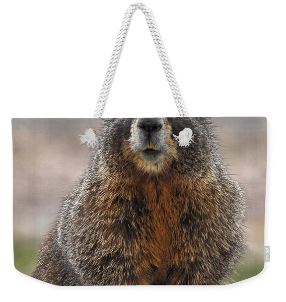Weekender Tote Bag featuring the photograph Marmot by Mae Wertz