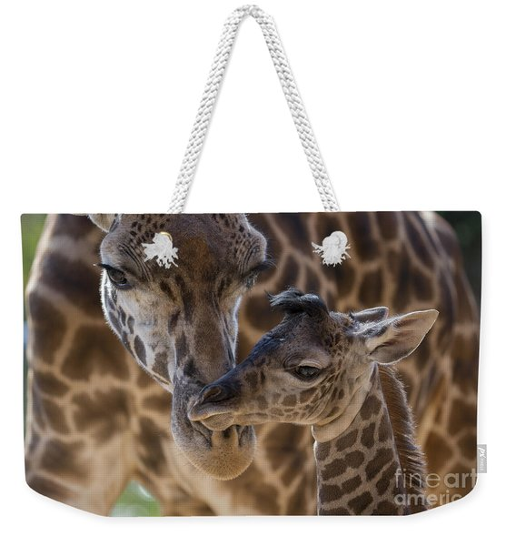 Masai Giraffe And Calf Weekender Tote Bag