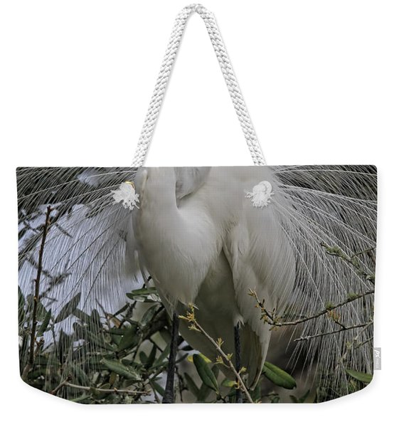 Mating Plumage Weekender Tote Bag