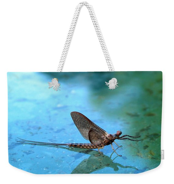 Mayfly Reflected Weekender Tote Bag