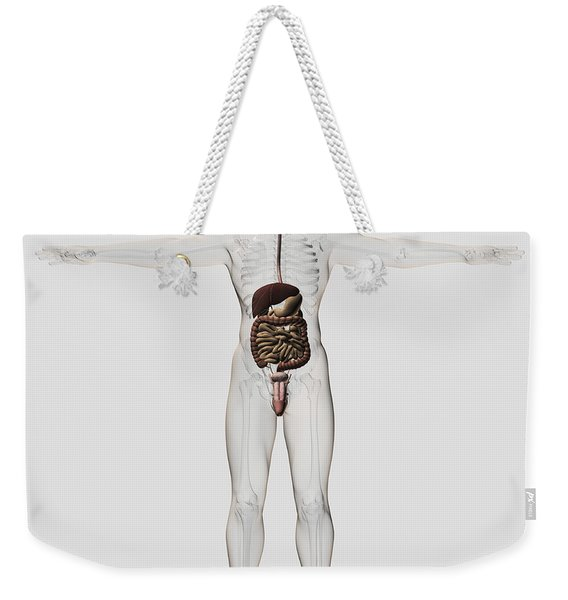 Medical Illustration Of Male Digestive Weekender Tote Bag