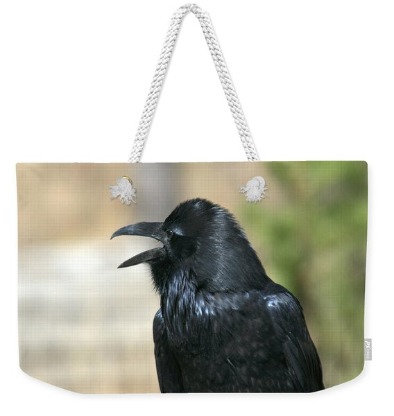 Meet My Friend   Where Did He Go Weekender Tote Bag
