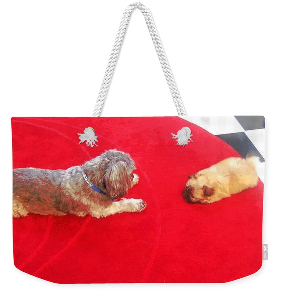 Dog And Puppy Pet Photography Lhasa Apso Shih Tzu Pomeranian   Weekender Tote Bag