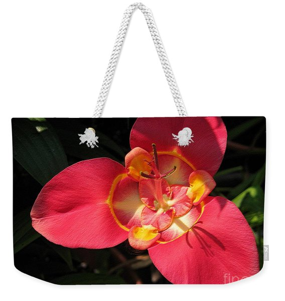 Mexican Shell Flower Without Spots Weekender Tote Bag