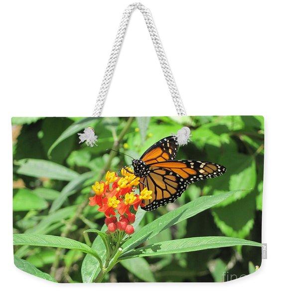 Monarch At Rest Weekender Tote Bag