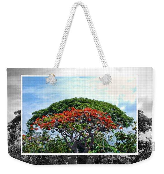 Monkey Pod Trees - Kona Hawaii Weekender Tote Bag