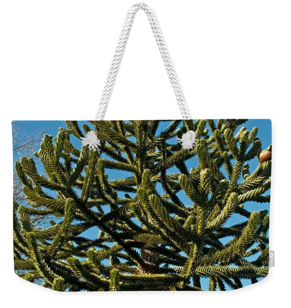 Monkey Puzzle Tree E Weekender Tote Bag
