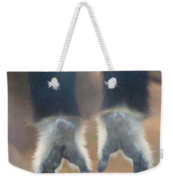 Monkeying Around  Weekender Tote Bag