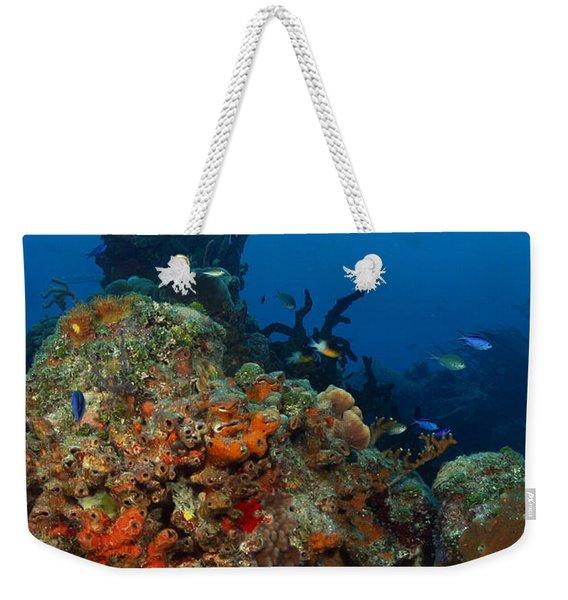 Moray Reef Weekender Tote Bag