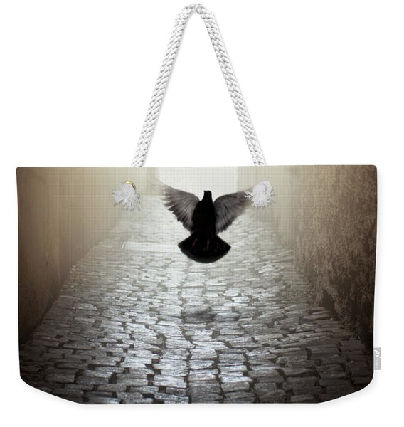 Weekender Tote Bag featuring the photograph Morning Impression With A Dove by Jaroslaw Blaminsky