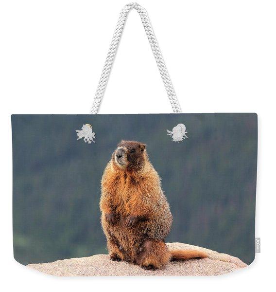 Mother Marmot Weekender Tote Bag