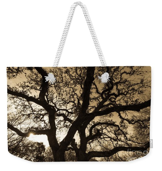 Weekender Tote Bag featuring the photograph Mother Nature's Design by John Wadleigh