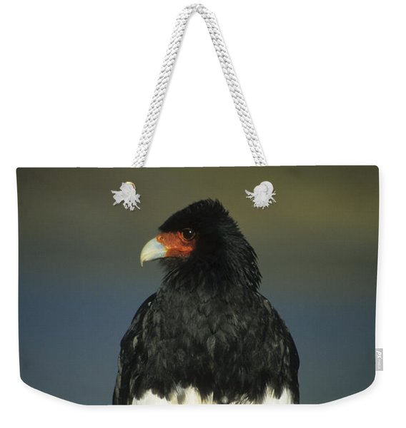 Mountain Caracara Weekender Tote Bag