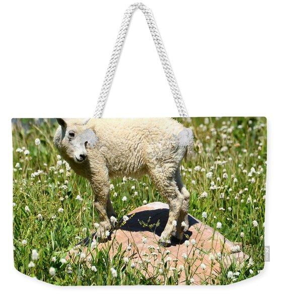 Mountain Goat Kid Among Wildflowers Weekender Tote Bag
