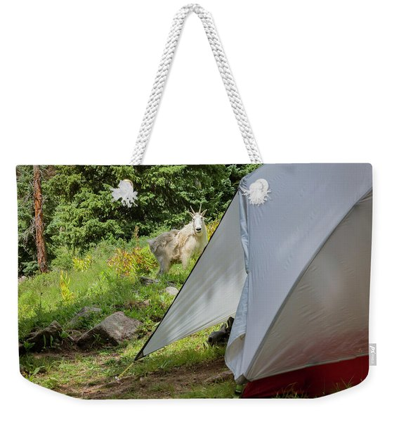 Mountain Goat Standing Near The Tent Weekender Tote Bag