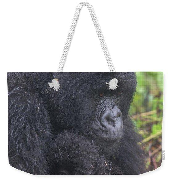 Mountain Gorilla, Gorilla Beringei Weekender Tote Bag
