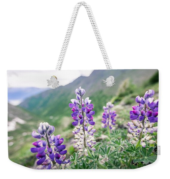Weekender Tote Bag featuring the photograph Mountain Lupine by Tim Newton