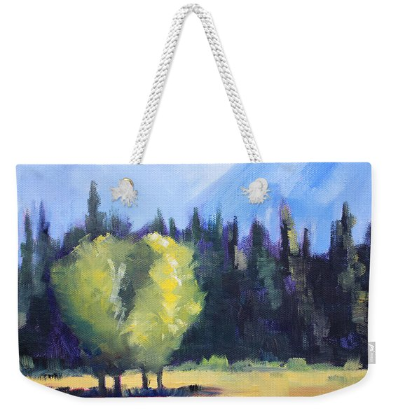 Mountain Shadows Landscape Painting Weekender Tote Bag