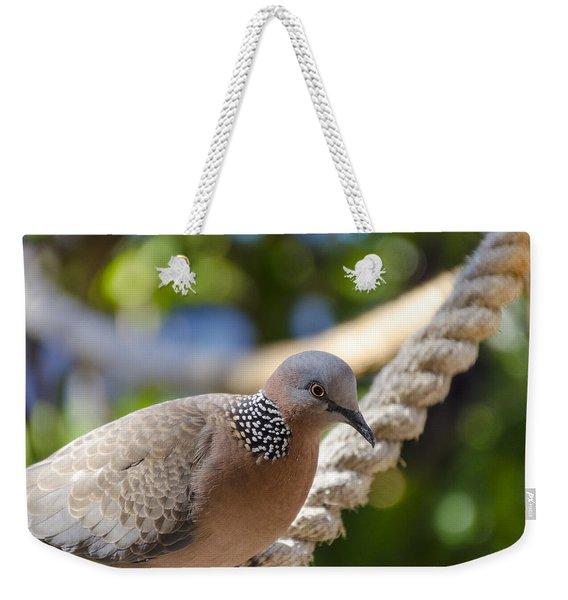 Mourning Dove Weekender Tote Bag