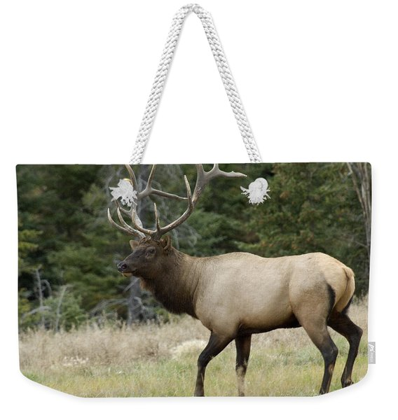 Mr Majestic Weekender Tote Bag