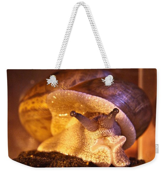 Mr. Snail Weekender Tote Bag