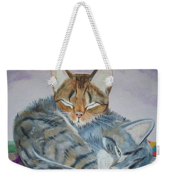 Nap Time Weekender Tote Bag