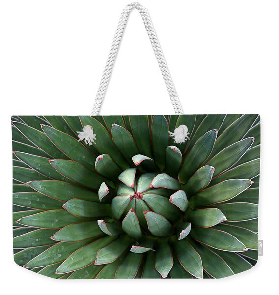 Nature's Perfect Abstract Weekender Tote Bag