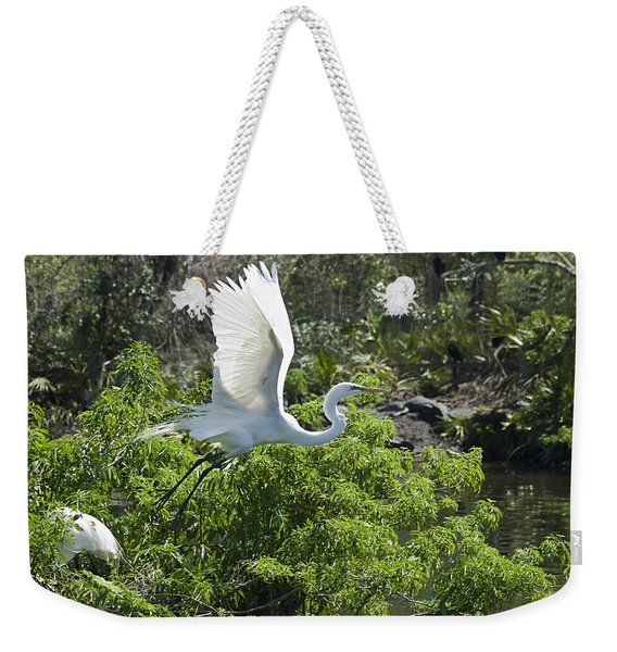 Weekender Tote Bag featuring the photograph Need More Branches by Carolyn Marshall