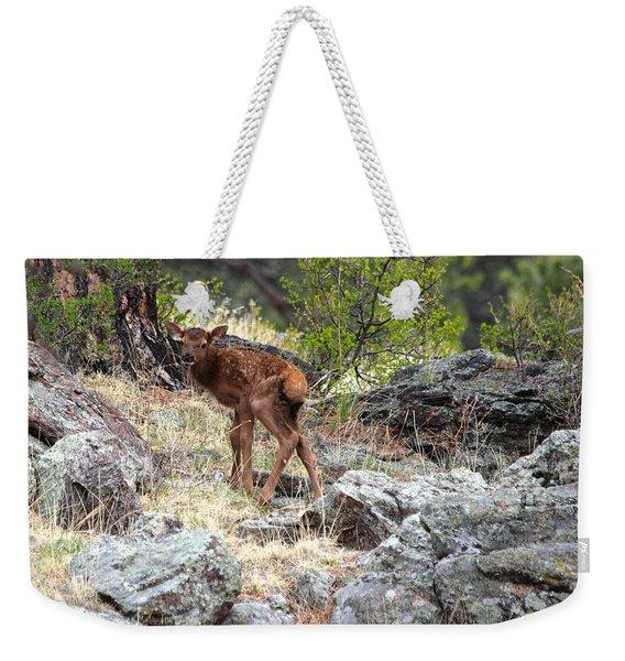 Newborn Elk Calf Weekender Tote Bag