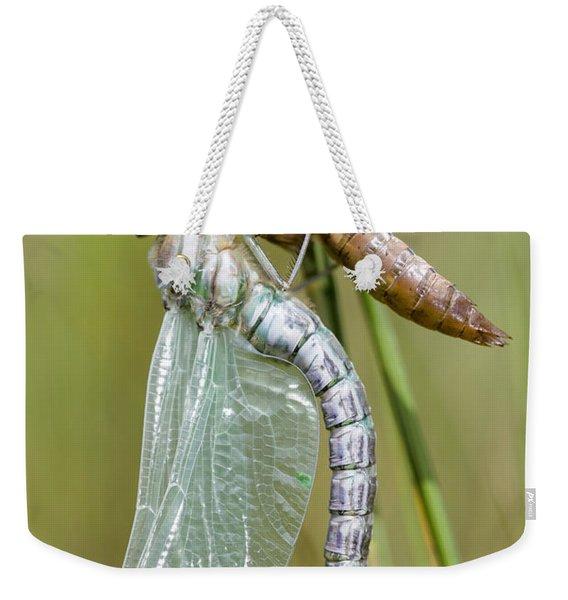 Newly Emerged Subarctic Darner Weekender Tote Bag