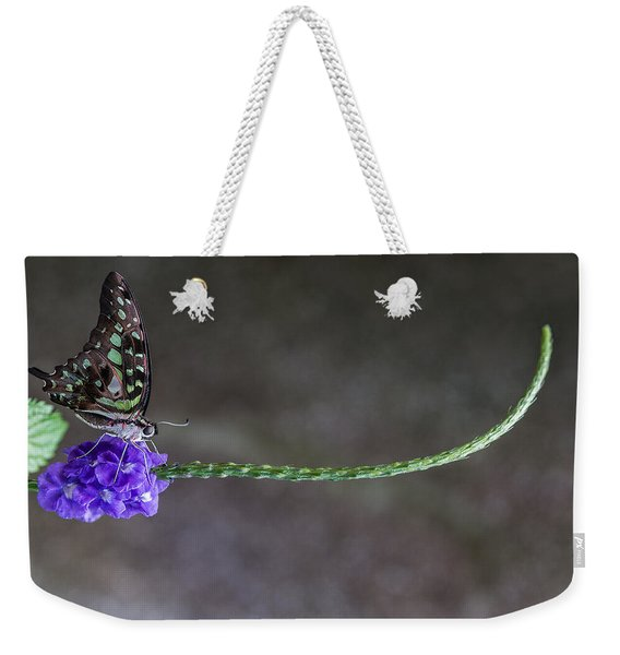 Weekender Tote Bag featuring the photograph Butterfly - Tailed Jay II by Patti Deters