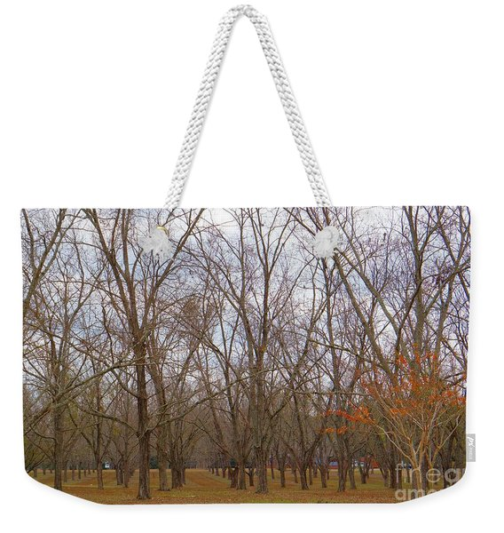 North Florida Orchard In Fall Weekender Tote Bag