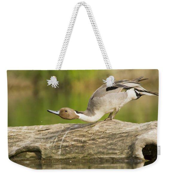 Northern Pintail  Weekender Tote Bag