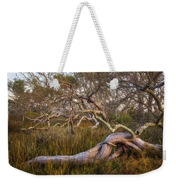 Oak Trees In The Marsh Weekender Tote Bag