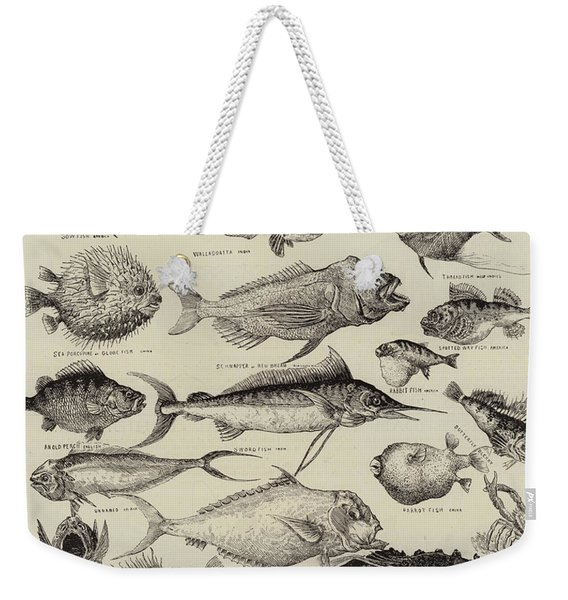Odd Fish At The International Fisheries Exhibition Weekender Tote Bag