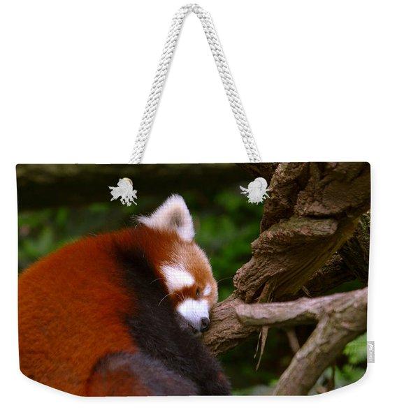 Oh So Sleepy Weekender Tote Bag