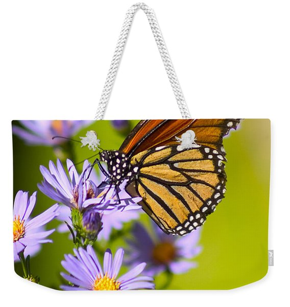Old Butterfly On Aster Flower Weekender Tote Bag