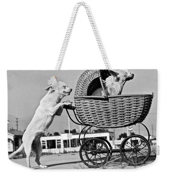 Old Dogs Perform Old Tricks Weekender Tote Bag