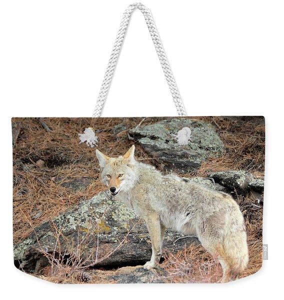 On The Prowl Weekender Tote Bag
