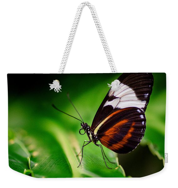 Weekender Tote Bag featuring the photograph On The Wings Of Beauty by Garvin Hunter