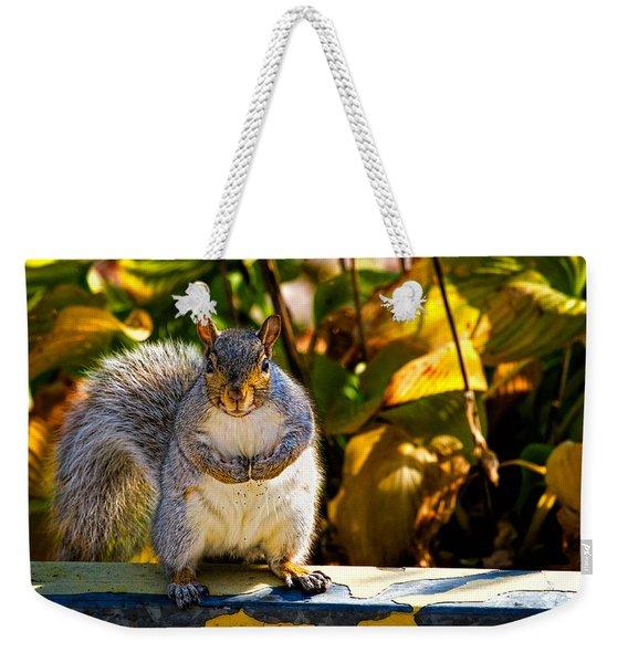 One Gray Squirrel Weekender Tote Bag
