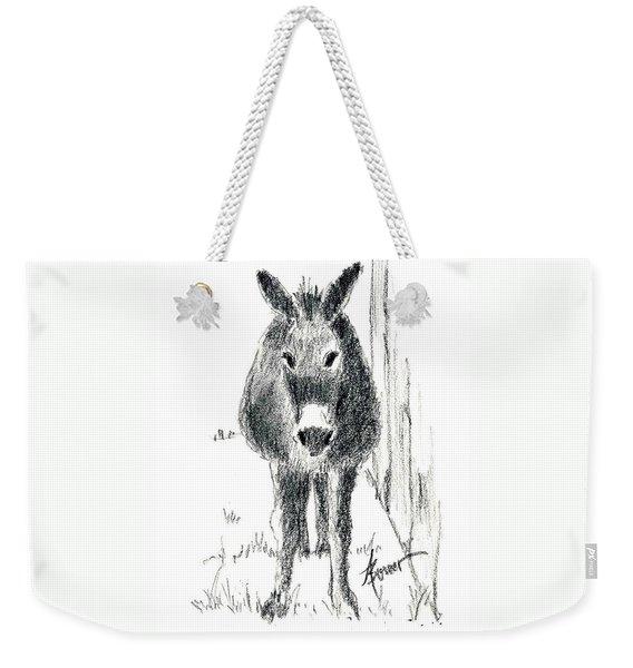 Our New Friend Weekender Tote Bag