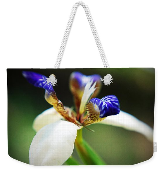 Out My Back Door Weekender Tote Bag