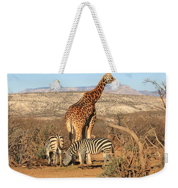 Out Of Africa Weekender Tote Bag