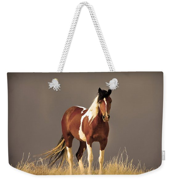 Paint Filly Wild Mustang Sepia Sky Weekender Tote Bag