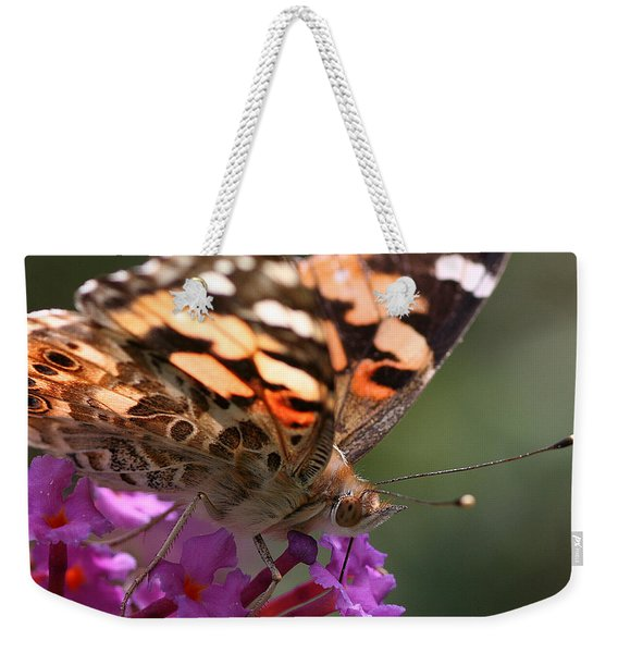 Painted Lady On Butterfly Bush Weekender Tote Bag