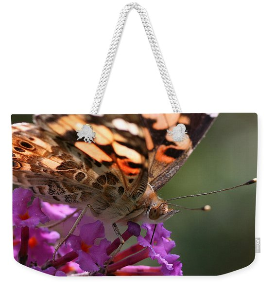 Weekender Tote Bag featuring the photograph Painted Lady On Butterfly Bush by William Selander