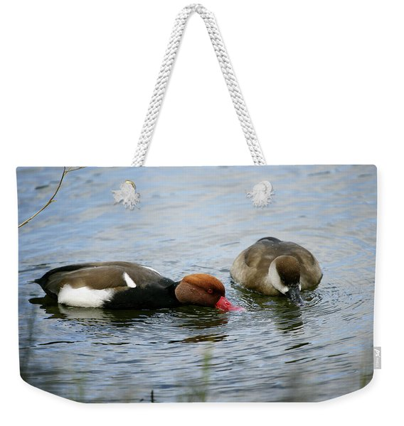 Pair Of Red-crested Pochards Netta Weekender Tote Bag